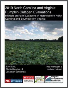 pumpkin-booklet-cover