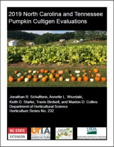 pumpkin booklet cover